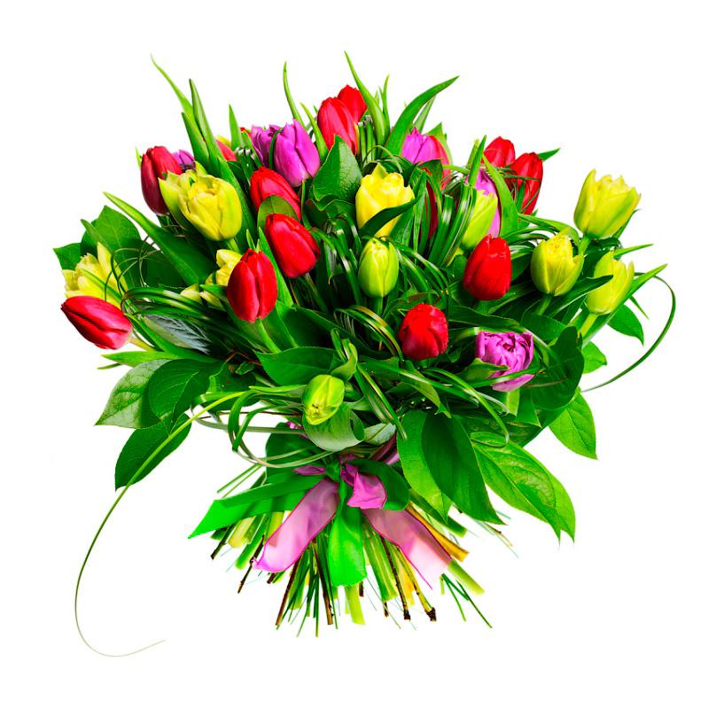 Фото Букет из разноцветных тюльпанов