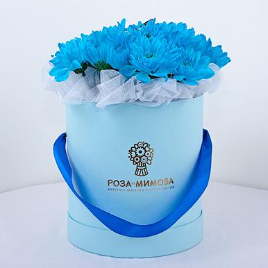 Мини-коробка голубых кустовых хризантем