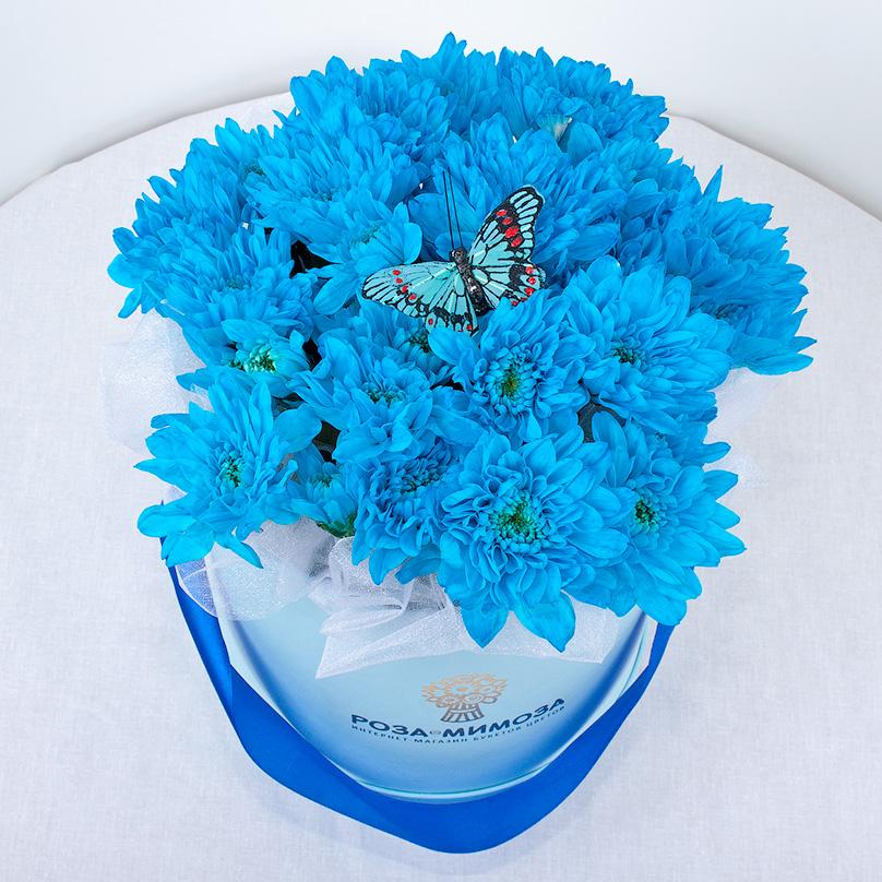 Фото Мини-коробка голубых кустовых хризантем