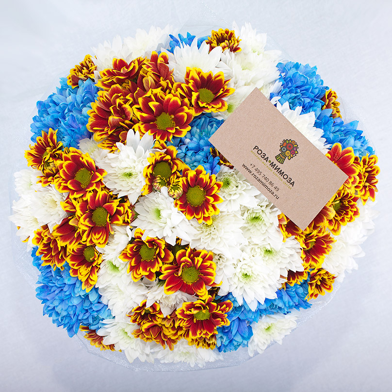 Фото Коробка с хризантемами трех цветов