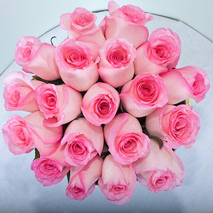 Фото Ароматная Кенийская роза в круглой коробке