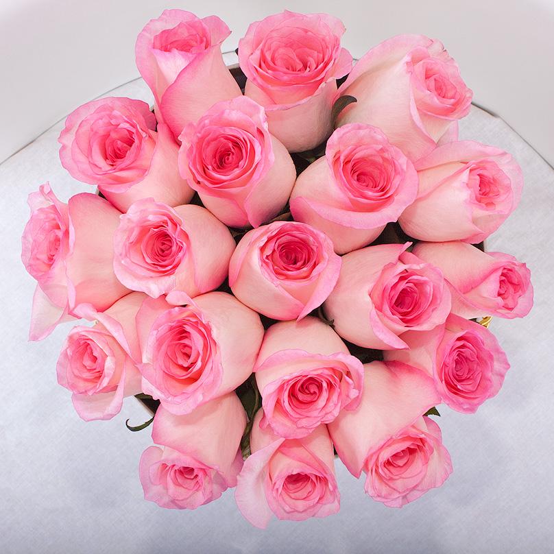 Фото Розовая кенийская роза в шляпной коробке