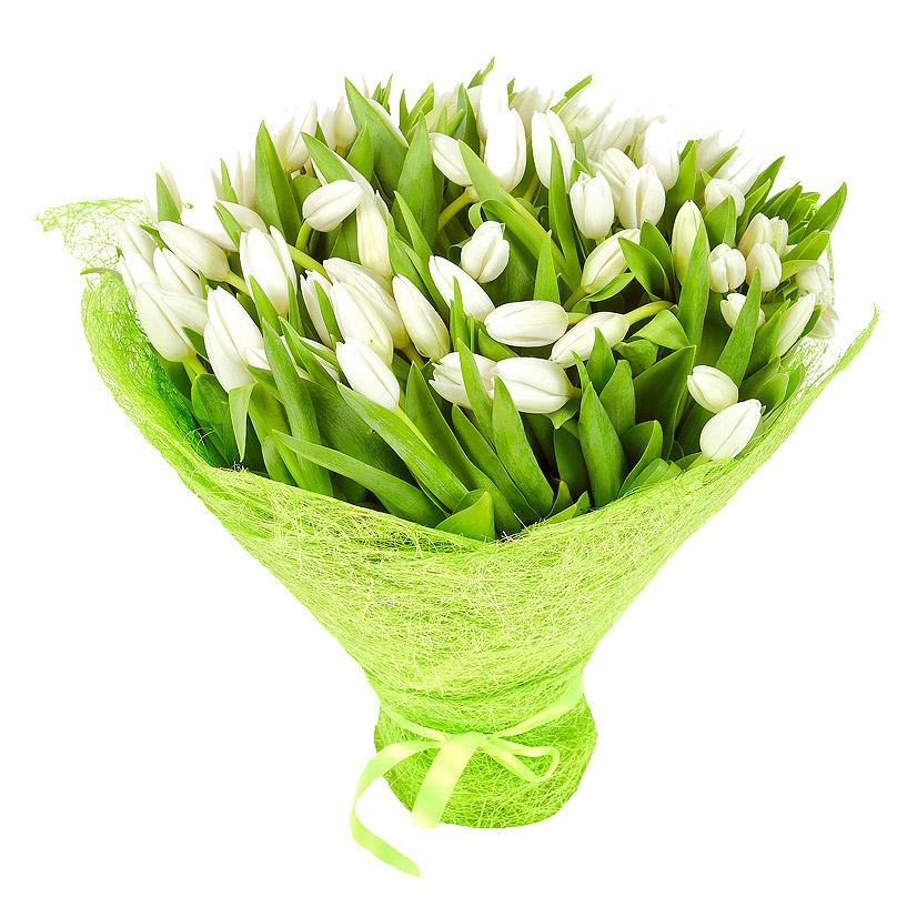 Фото Букет из белых тюльпанов