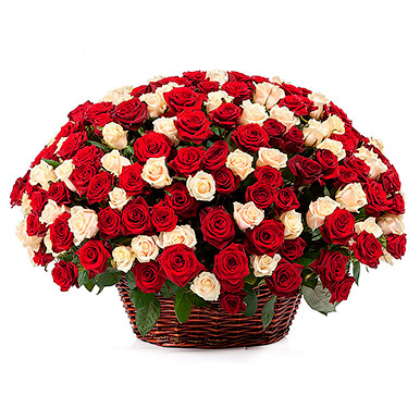 251 кремовая и красная роза в корзине