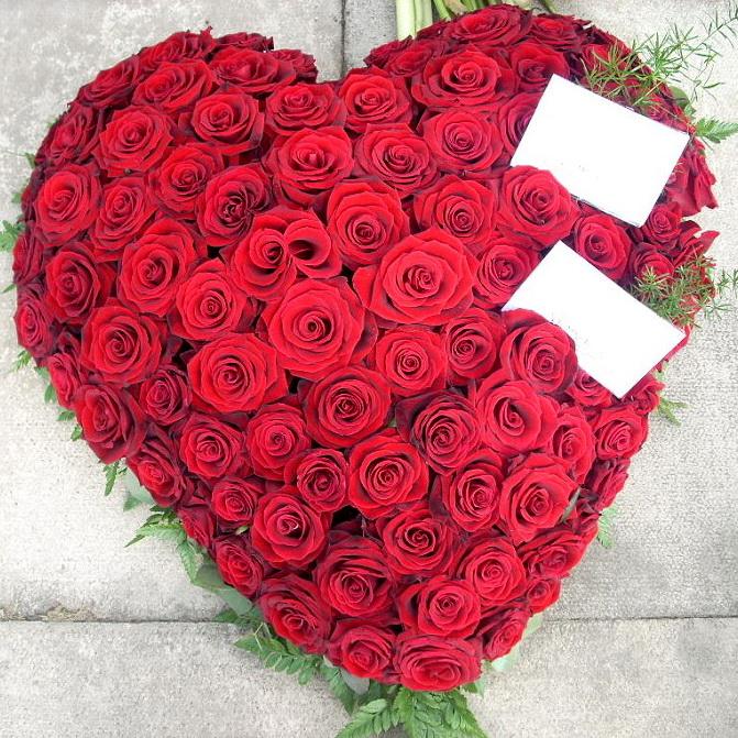 Фото Сердце из 101 розы