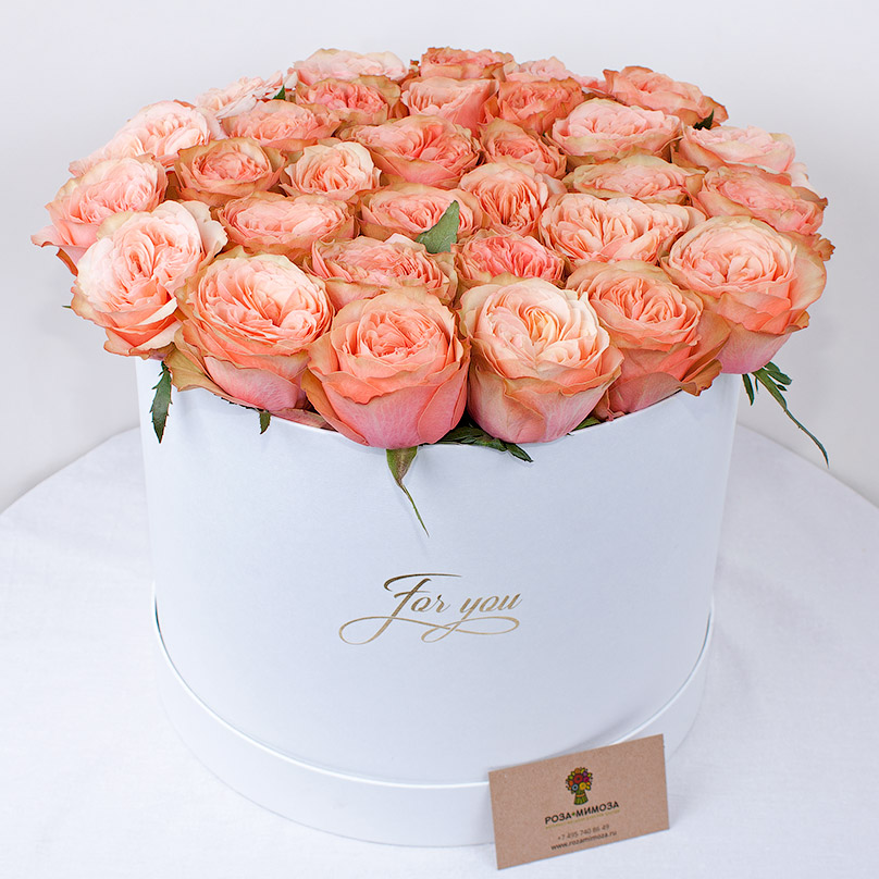 Фото Французская пионовидная роза в большой коробке