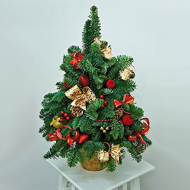 Мини-елочка из живой хвои с новогодним декором