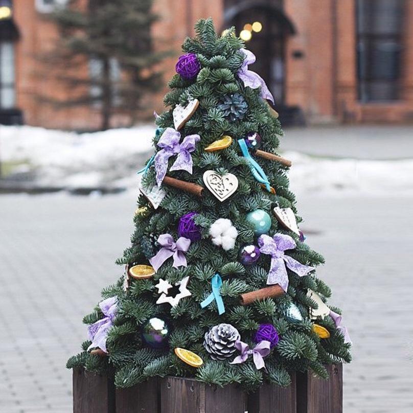 Фото Большая елка из живой хвои с новогодним декором