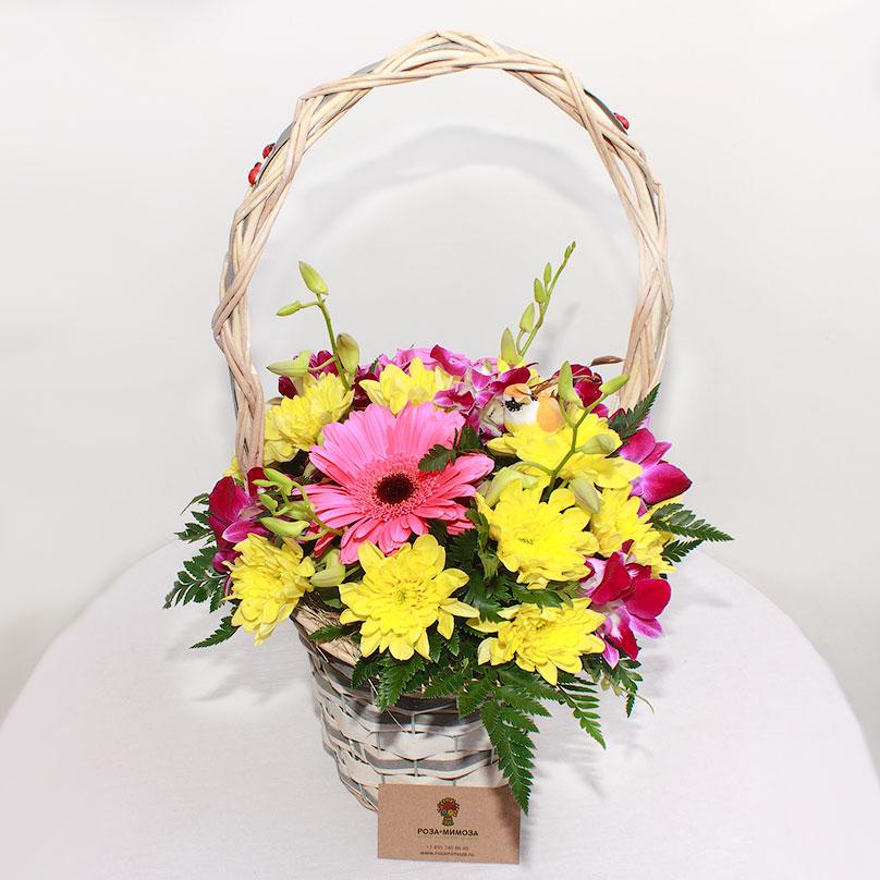 Фото Корзинка с хризантемой и герберой