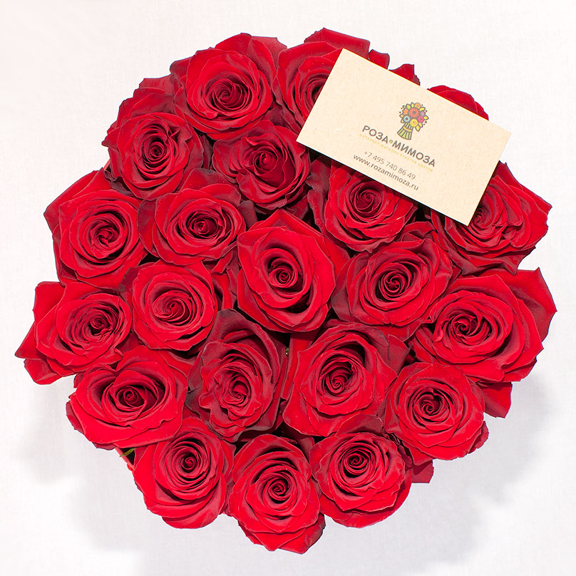 Фото Красные эквадорские розы в красной шляпной коробке