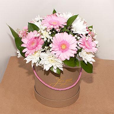 Мини-коробка с герберами и хризантемами